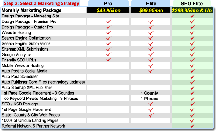 Step 2 Select an Internet Marketing Strategy