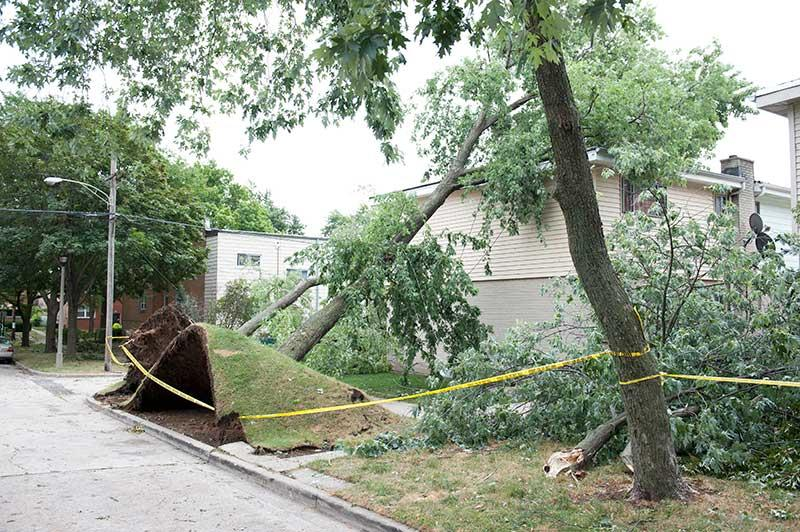 wind damage restoration wind damage repair  Kentucky Boone County
