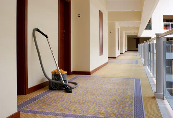 carpet cleaning carpet shampoo services Washburn Wisconsin Clark County